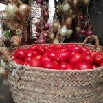 Cómo hacer conserva de tomate ecológico